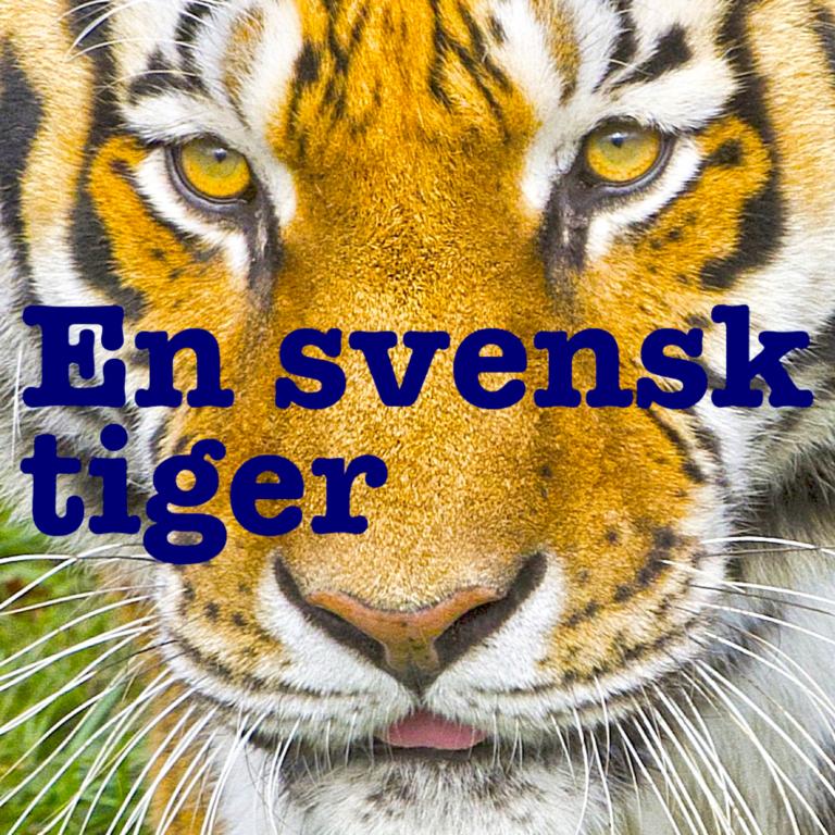 En Svensk Tiger: En podcast om modernhistoria.