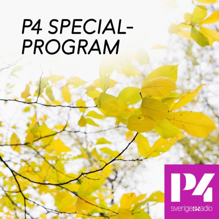 P4 specialprogram